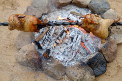 Chicken on a spit Royalty Free Stock Photos