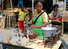 Chicken stall in an Indonesian market Stock Images