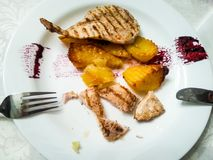Chicken steak. Closeup of a chicken grilled steak with potatoes and soya souce stock photography