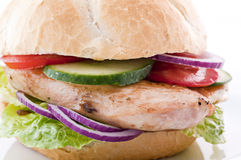 Chicken Steak sandwich Stock Photography