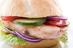 Chicken Steak sandwich stock photography