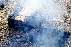 Chicken steaks on the grill in the smoke royalty free stock images