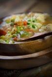 Chicken stew Royalty Free Stock Photo