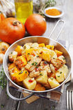 Chicken stew with pumpkin, potatoes and spices Stock Image