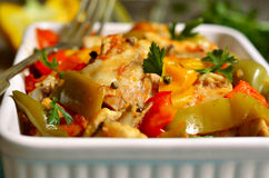 Chicken stewed in tomato sauce with bell pepper. Stock Photography