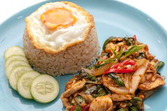 Chicken stir fried with chili paste and some vegetable, served with fried egg, rice and cucumber on the plate.  Stock Photos