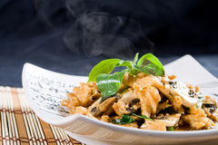 Chicken stir fry Stock Image
