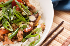 Chicken stir fry with rice Royalty Free Stock Photos