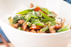 Chicken stir fry with rice Royalty Free Stock Images