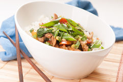 Chicken stir fry with rice Royalty Free Stock Image