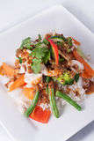 Chicken stir-fry with vegetable and rice asia food Royalty Free Stock Images