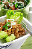 Chicken stripes with salad Stock Photography