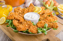 Chicken strips with delish garlic dip royalty free stock image
