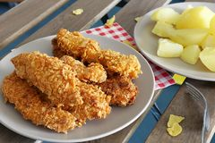 Chicken strips Royalty Free Stock Photo