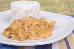 Chicken stroganoff Stock Images