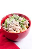 Chicken stroganoff Royalty Free Stock Images