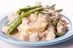 Chicken stroganoff, delicious dish of diced chicken, creamy mu Stock Images