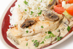 Chicken stroganoff plate at an angle Stock Photos