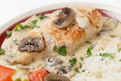 Chicken stroganoff with rice Stock Images