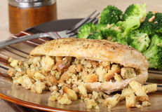Chicken and Stuffing. Closeup of a baked chicken breast with stuffing Stock Image