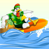 Chicken Surf. A chicken mascot that doing surfing at beach or sea Royalty Free Stock Photography