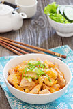 Chicken in sweet and sour sauce Stock Image