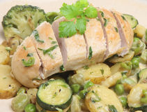 Chicken Tarragon with Vegetables Stock Photography