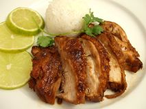 Chicken Teriyaki Royalty Free Stock Photo