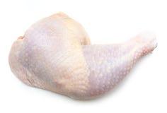 Chicken thigh on white. Background stock photos