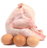 Chicken and three eggs Stock Photos