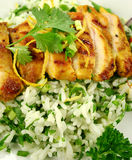 Chicken Tikka Stock Image