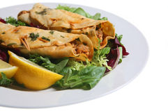 Chicken Tikka Kebabs. Indian snack food, chicken tikka kebabs with salad and lemon slices Stock Photography
