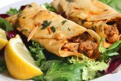 Chicken Tikka Kebabs Stock Images
