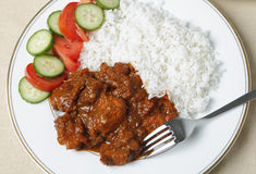 Chicken tikka masala curry from above Royalty Free Stock Image