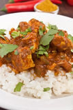 Chicken Tikka Masala curry with rice Stock Photography