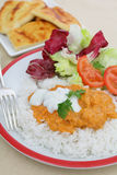 Chicken tikka masala meal vertical Royalty Free Stock Photos