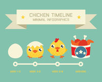 Chicken Timeline Royalty Free Stock Photo