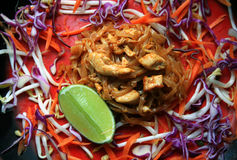 Chicken Tofu Pad Thai Royalty Free Stock Images