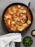 Chicken and Tomato Casserole. With Spring Onion Royalty Free Stock Images