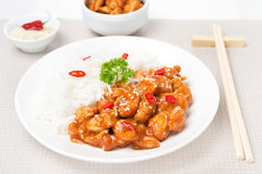 Chicken in tomato sauce with sesame seeds and rice Stock Photography
