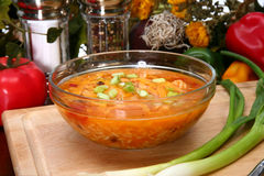 Chicken Tortilla Soup Stock Images