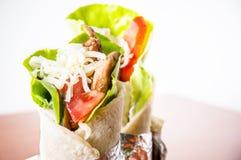 Chicken tortilla Stock Image