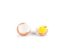 Chicken toy and egg shell  on white Royalty Free Stock Photos