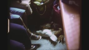 Chicken On A Train. PHILIPPINES, BICOL REGION, APRIL 1980. Woman Lifts Up Some Chicken Bound Together By Their Legs And Fluttering With Their Wings Inside A stock video footage