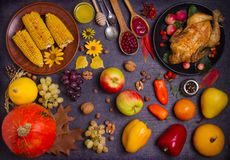 Thanksgiving food concept. Harvest or Thanksgiving background. Chicken or turkey, autumn fruits and vegetables: corn, pumpkin, paprika, apples. Cranberry sauce stock images