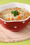 Chicken or turkey soup Royalty Free Stock Photos
