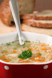Chicken or turkey soup Stock Photography