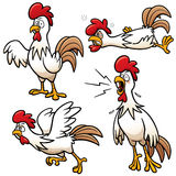 Chicken Royalty Free Stock Photo