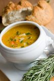 Chicken and vegetable casserole Stock Photography