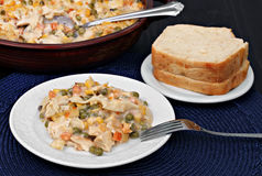 Chicken, vegetable and noodle casserole. Stock Image
